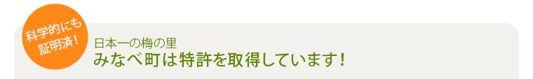 日本一の梅の里 みなべ町は特許を取得しています!
